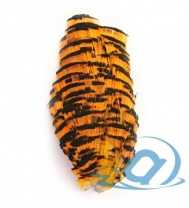 Шейный сегмент золотого фазана Wapsi Golden Pheasant Tippet Section Natural