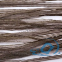 Набор перьев WHITING 100's Saddle Hackle #14 Dark Dun