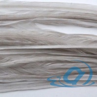Набор перьев WHITING 100's Saddle Hackle #14 Light Dun